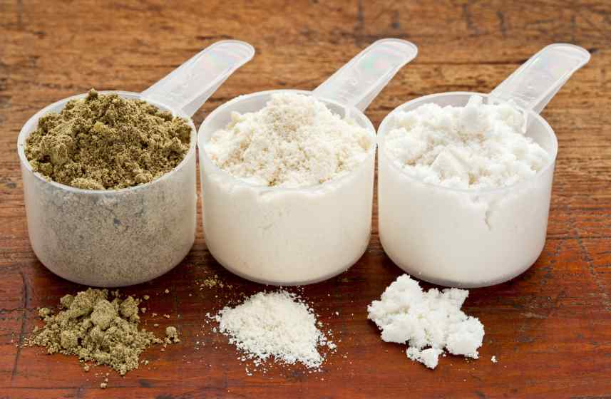 different forms of plant based protein powder in scoops.