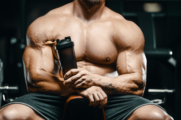 whey protein powder use for muscle building